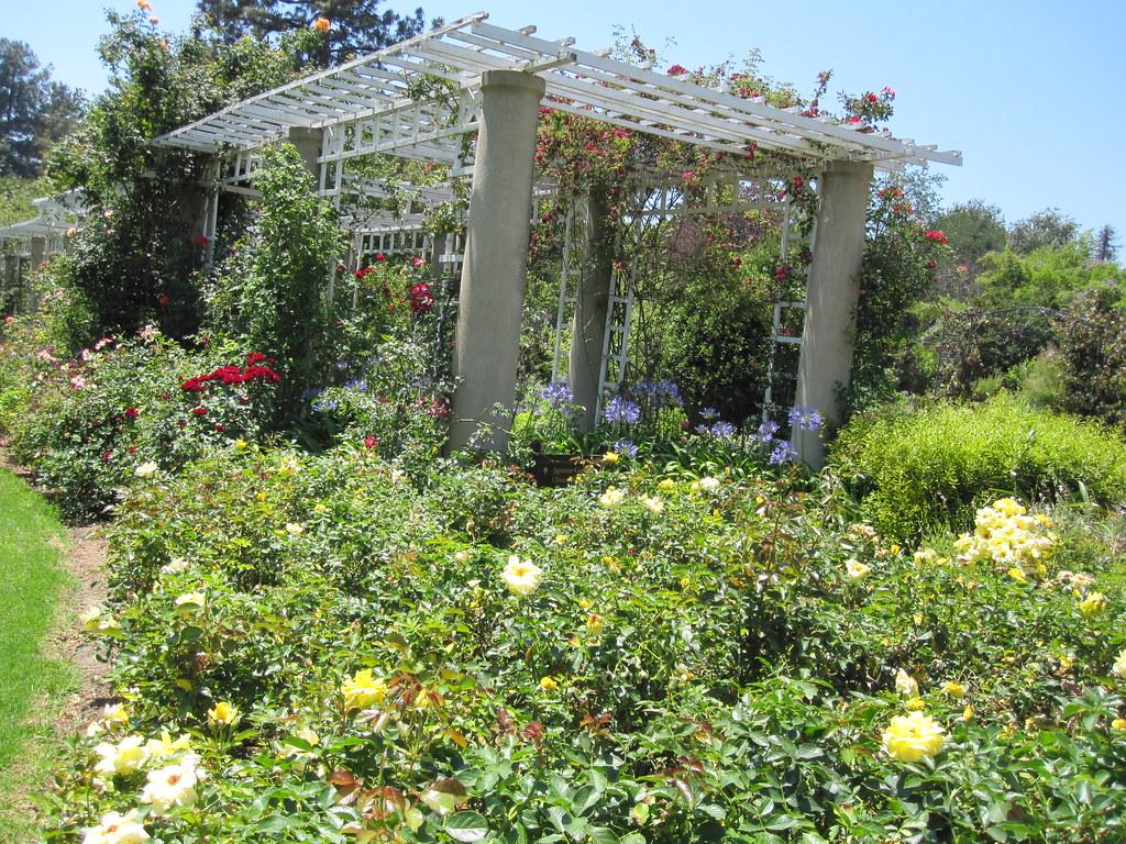 Huntington Botanical Gardens Pasadena Ca By Revrev