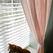 Cat and Curtains