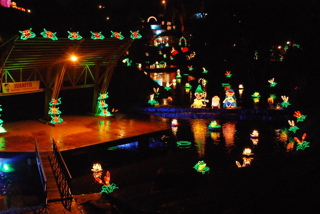 Imagen del Parque de la Vida en navidad