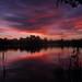 Lake sunset - whilst fishing