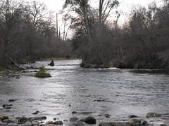 Mini River