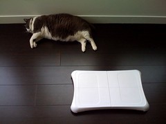 Musu tired of playing Wii fit