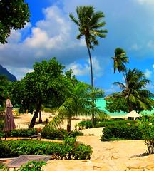 More Bora Bora