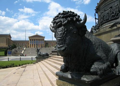 Philadelphia, buffalo IMG_8894