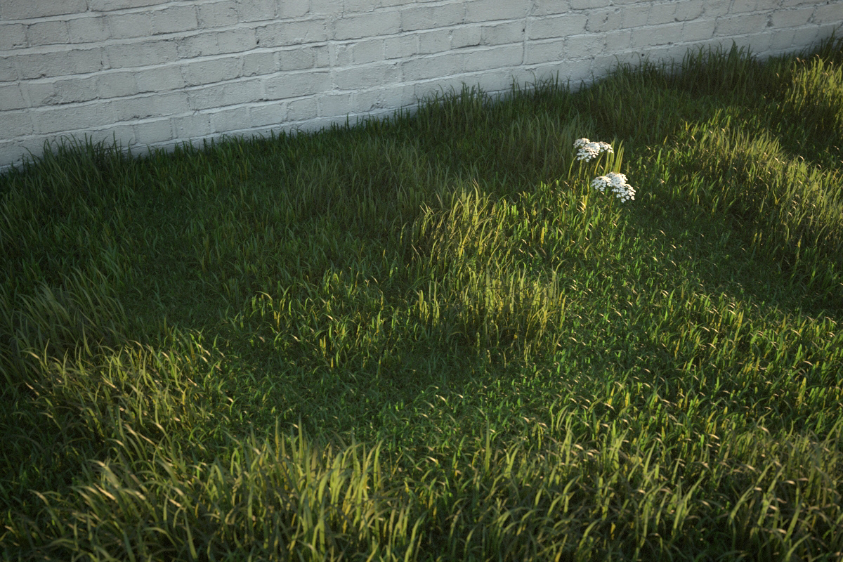 Vray grass tutorial part 2 — PETER GUTHRIE