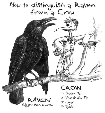 Gothic Divine Magazine: Crows and Ravens