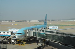 airline, aviation, narrow-body aircraft, airliner, airplane, building, airport apron, airport, vehicle, jet bridge, air travel, wide-body aircraft, infrastructure, tarmac, jet aircraft,