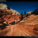 Zion National Park (14)