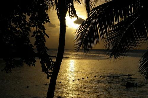 ocean voyage sunset sun beach pentax maurice ile mauritius plage indien couchédesoleil cocotiers beautifulphoto k100d fleursetnature grouptripod vosplusbellesphotos absolutegoldenmasterpiece thebestofcengizsqueezeme2groups