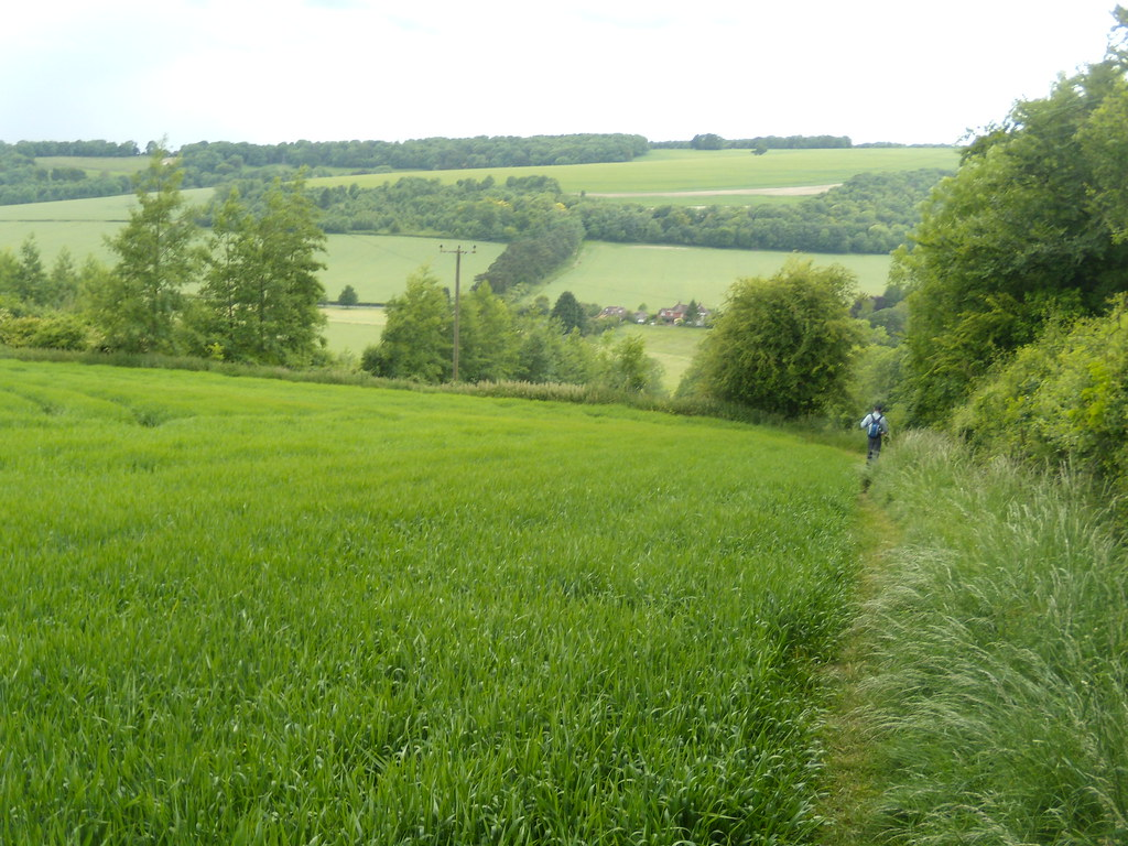Descent into Compton Rowlands Castle Circular
