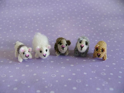 Guinea Pigs by MUFFA Miniatures