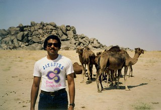 Jay with Camels in Taif