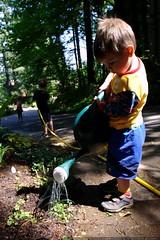 sequoia and nick watering whatever rachel is plantin…