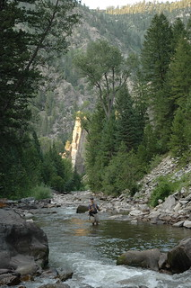 Fly Fishing the stream