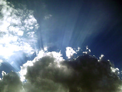 Beautiful rays