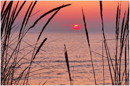 sunset lake beach dunes lakemichigan greatlakes montague muskegoncounty medburypark stacyniedzwiecki stacycossolini puremichigan 1stjd