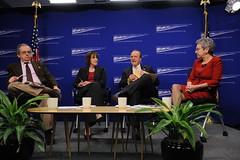 Obama Health Care Reform, Health Reform panel