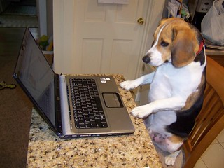 Copper working on his Facebook page