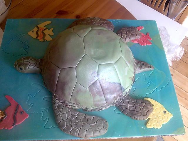 D Turtle Cake Pan