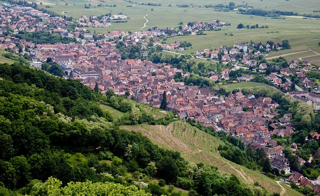 Bergheim to Ribeauville, Alsace