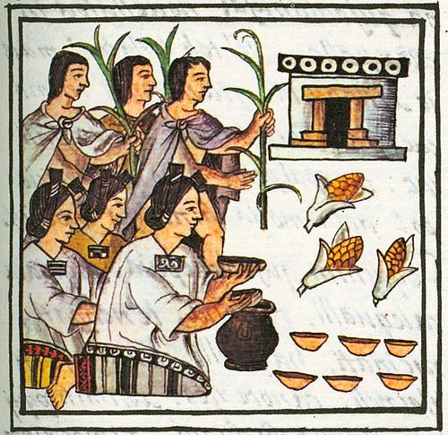 De cocina antigua gastronom a mesoamericana sorpresa for Historia de la gastronomia pdf