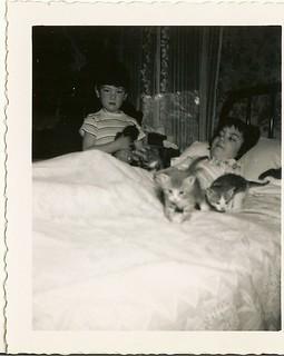 Marie, John, and kittens