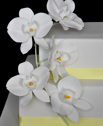 Stunning Wedding Cakes with Orchid Flowers 411 x 500 · 64 kB · jpeg