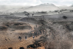 """INDIA2191/ """"Trek to Pushkar"""""""