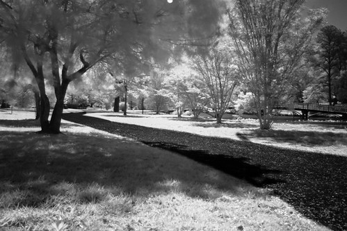 longexposure bridge blackandwhite white black monochrome canon md downtown path camden maryland easternshore infrared eastern pathway eastcoast easternshoreofmaryland wicomico wicomicoriver downtownsalisbury canon50d salisburycitypark