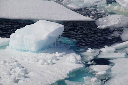 630 Weddell Sea