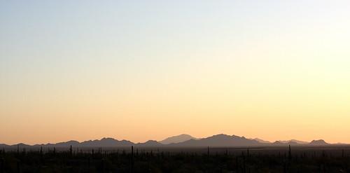 The Sonoran Desert at dusk