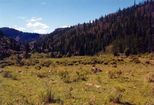1998 lajaracanyon