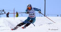 winter sport, nordic combined, individual sports, ski cross, skiing, sports, recreation, outdoor recreation, slalom skiing, cross-country skiing, downhill, telemark skiing,