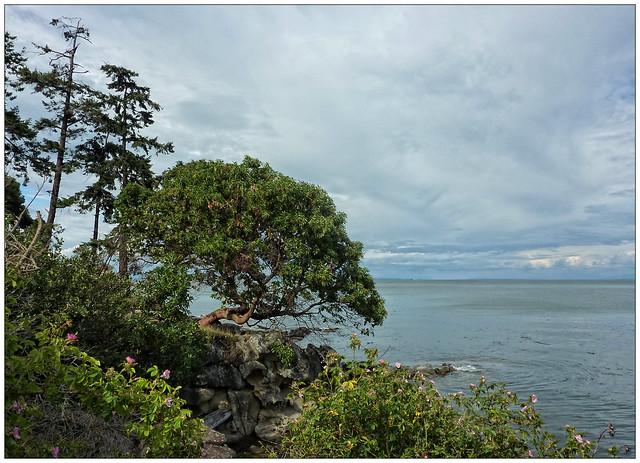 Mayne Island Bc Mayneliner Obituaries For