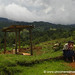 Ruta Lenca Landscape - Marcala, Honduras