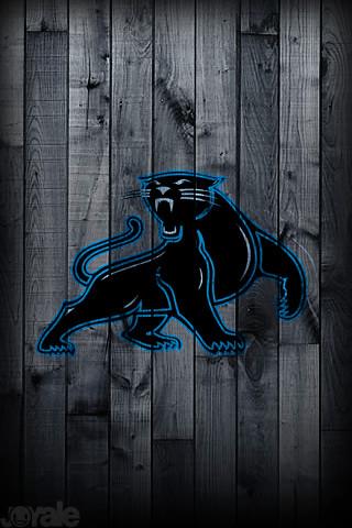 Carolina panthers i phone wallpaper flickr photo sharing - Carolina panthers mobile wallpaper ...