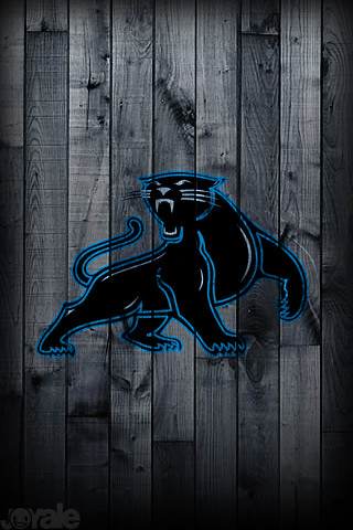 Carolina Panthers I Phone Wallpaper Download Photo Free Photo