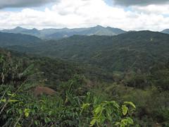 Lares Puerto Rico