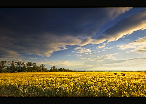 summer nature june landscape nikon hungary espíritu magyarország d90 botond horváth