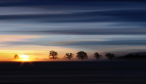 trees mist sunrise dawn east bfa lothian haddington sigma1020 canon450d