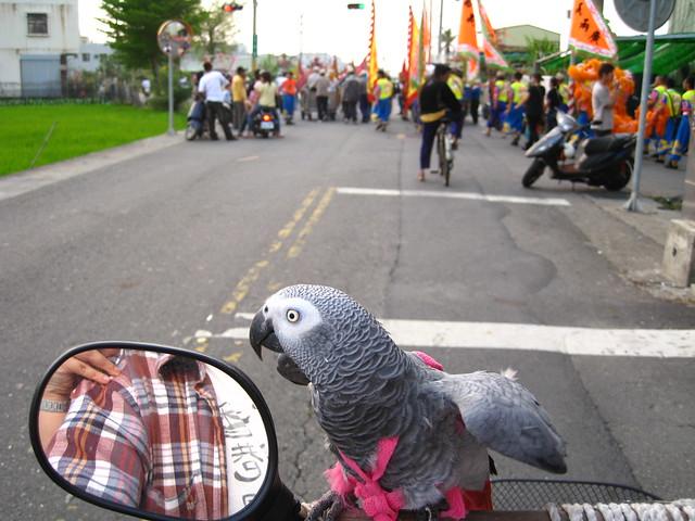 04 procession (1)