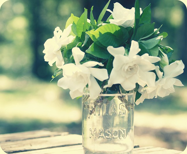 nature's perfume....