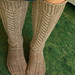 Tyrolean Stockings