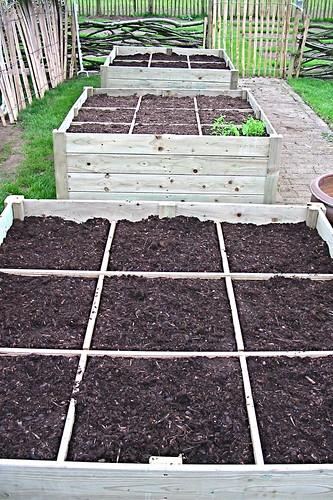 Mme zsazsa vertelt de tuin in april over kruid en onkruid - Geplaveid voor allee tuin ...
