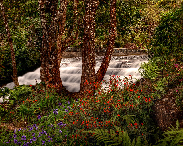 ~ The Colorful Waterfall ~