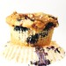 Best blueberry muffin.