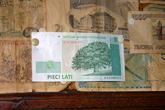 Tree on Currency