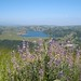 Tilden-to-Wildcat-Canyon-2009-04-25