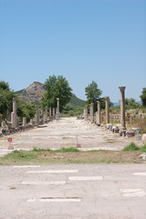 Harbor Road: Ephesus