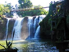 Waterfalls, Wildlife And Paronella Park